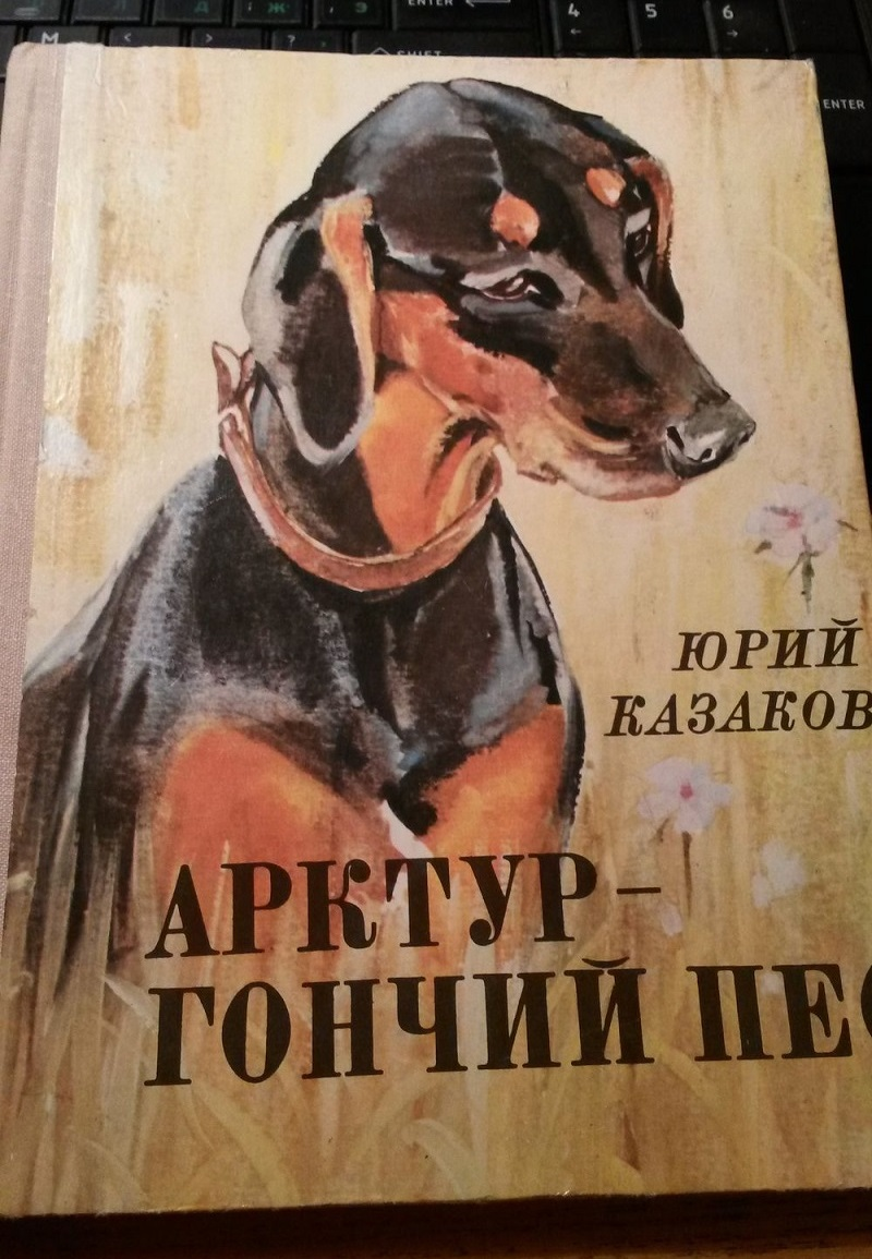 Картинки арктура гончего пса