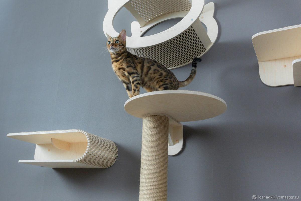 Когтеточка для кошек: обзор лучших вариантов от интернет магазинов с ценами, фото и реальными отзывами потребителей