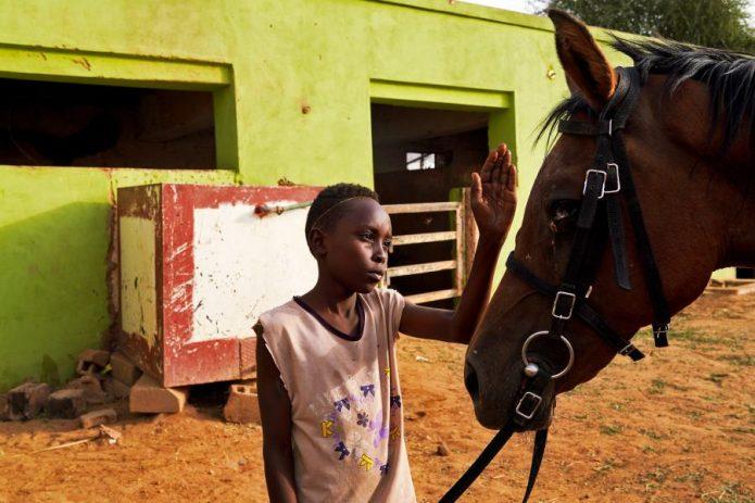 Лошадь и мальчик