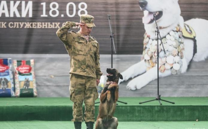Собака и человек отдают честь