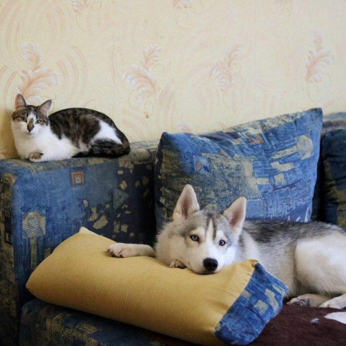 Синди и Мася на диване
