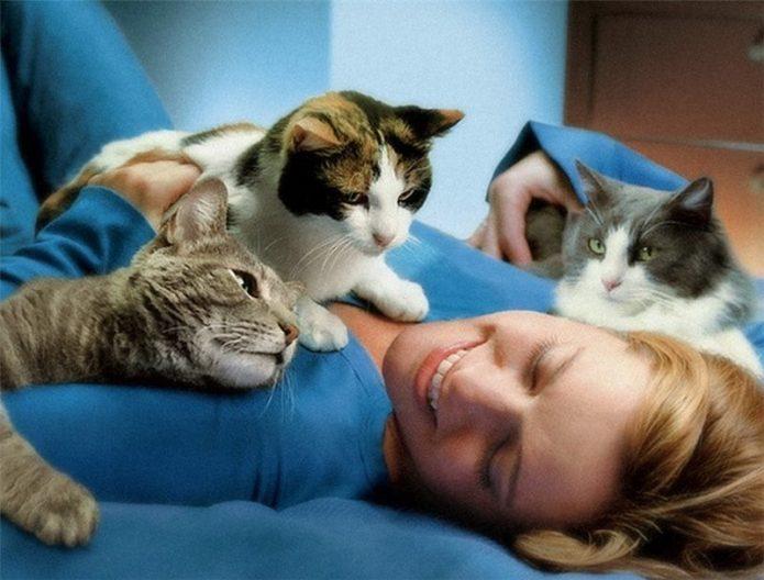 Три кошки с девушкой