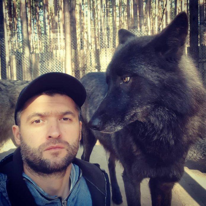 волк Уголек