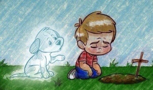 Ребенок грустит на могиле собаки
